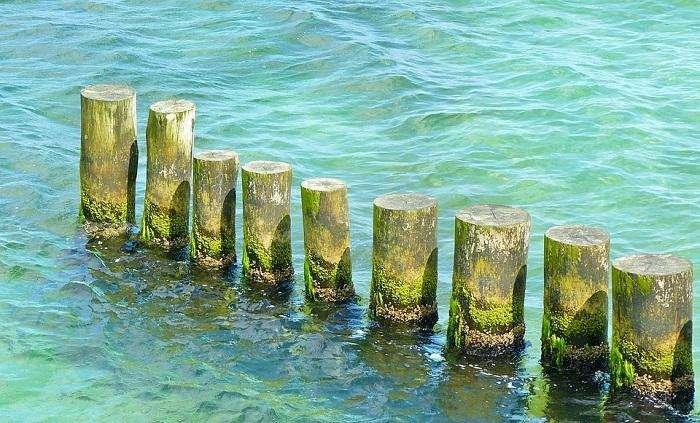 sea-813107_960_720_14556  நிறம் மாறும் கடல்கள்... நிஜமாகிறதா ஆறாவது பேரழிவு! sea 813107 960 720 14556