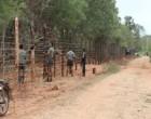 யாழ்-வலி வடக்கில் 30 ஏக்கர் காணி விடுவிப்பு