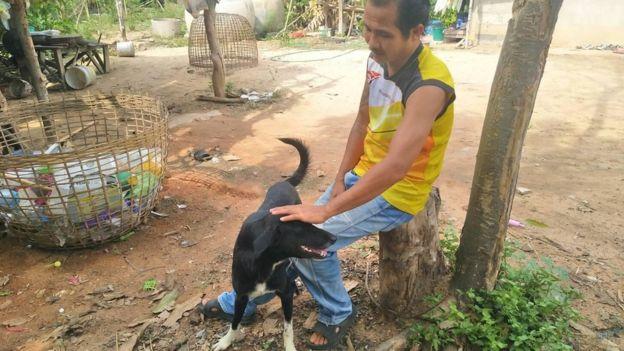 Thailand-dog-2 உயிருடன் புதைக்கப்பட்ட குழந்தையை காப்பாற்றிய நாய் உயிருடன் புதைக்கப்பட்ட குழந்தையை காப்பாற்றிய நாய் Thailand dog 2