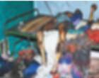 வேறொருவருடன் மனைவிக்கு இருந்த தகாத உறவு: மனைவி, இரு பிள்ளைகள் உள்ளடங்கலாக 9 பேரை சுட்டு கொன்று எரித்த கணவன்