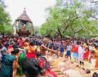 தொண்டைமானாறு செல்வச்சந்நிதி கோவிலின் தேர்த் திருவிழா, இன்று- வீடியோ