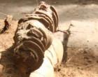 கீழடி: ஆதிகால தமிழரின் வடிகால் அமைப்பை வெளிப்படுத்திய ஐந்தாம் கட்ட ஆய்வு