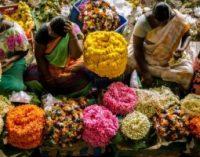 உலக தாய்மொழி தினம்: 'தமிழின் சிறப்பு அதன் தொன்மையில் இல்லை; தொடர்ச்சியில் இருக்கிறது'