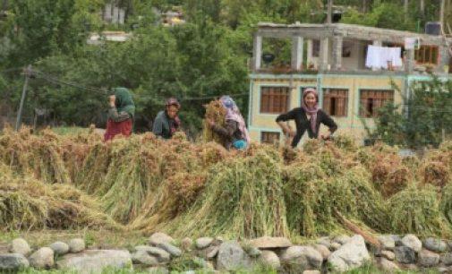 காஷ்மீர்: பாகிஸ்தானிடம் இருந்து இந்தியா போரில் கைப்பற்றிய கிராமம்