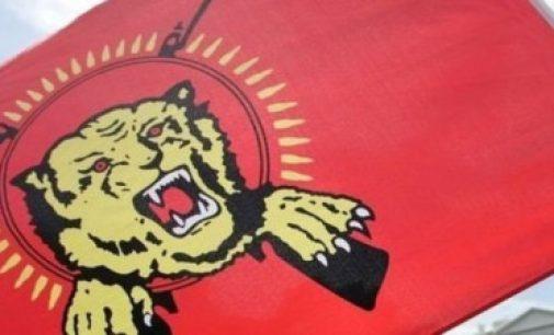 விடுதலைப் புலிகள் அமைப்பை மீண்டும் உருவாக்க முயற்சி – இலங்கையில் ஒருவர் கைது
