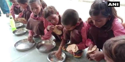 midday_meal