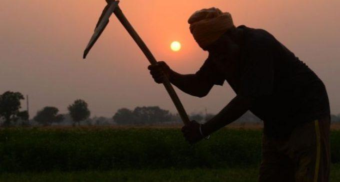 கொரோனா வைரஸ்: 10 புலம்பெயர்ந்த தொழிலாளர்களை விமானத்தில் அனுப்பி வைக்கும் விவசாயி