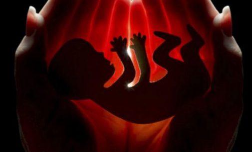 சட்டவிரோத கருகலைப்பு நிலையம் முற்றுகை: ஓய்வுபெற்ற வைத்தியர் பெண் கைது!