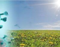 கண்டுபிடிப்பு – கொரோனா பரவலை சூரிய ஒளி, வெப்பம், ஈரப்பதம் குறைக்கும்!