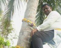 தேங்காய் விலை 100 ரூபாய் தென்னை மரத்தில் ஏறிய இலங்கை அமைச்சர்