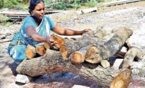மயான வேலையில் ஈடுபட்டு 8 ஆயிரம் உடல்களை தகனம் செய்த பெண்