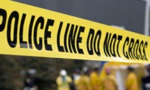 வட்டுக்கோட்டை இரட்டைக்கொலை – 12 பேர் சந்தேகத்தில் பொலிஸாரால் கைது