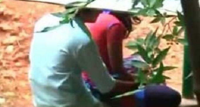 சல்லாபத்தில் ஈடுபட்ட  ஜோடியை எட்டிப்பார்த்த பாட்டிக்கு ஏற்பட்ட கதியை பாருங்களேன்!!